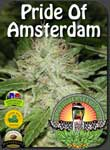 vancouver-pride-of-amsterdam